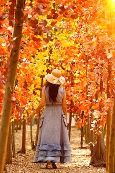 女性は夏の春に美しい色でオレンジ色のフィールドを歩きます。アジアの女性の青いドレスの帽子、コピースペース
