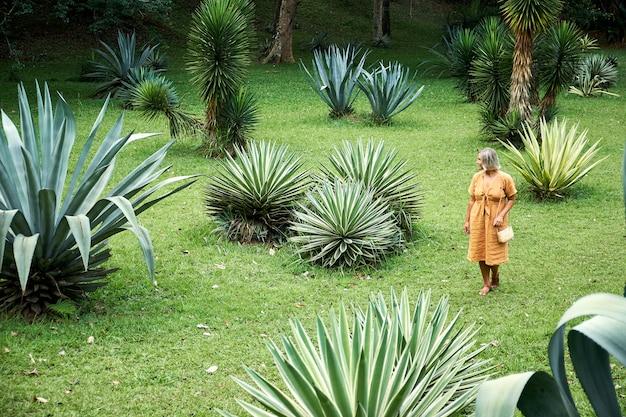 リュウゼツランの中で緑の野原を歩く女性
