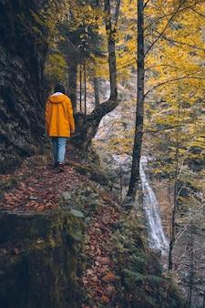 背景のコピースペースに黄色のレインコートの滝で秋の森の小道を歩いている女性