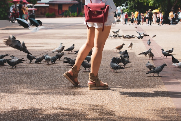 Woman walking feeding birds to eat at tha phae gate chiang mai old city ancient wall and moat in chiang mai northern thailand