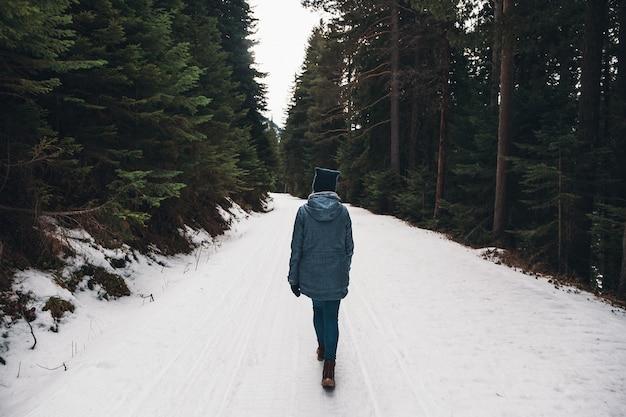 Женщина гуляет в зимнем лесу. авантюрист, гуляет среди огромных сосен по заснеженной дороге. замечательное путешествие по зимней глуши. вид сзади.