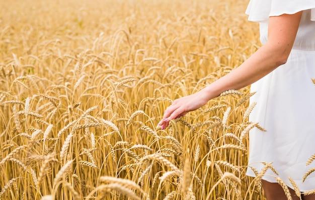 자연 농업과 사람들에 대한 밀 개념을 걷는 여성