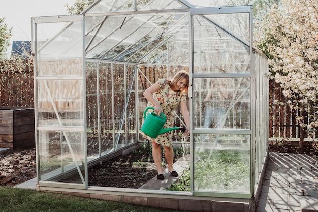 물을 깡통을 사용하여 온실에 물을주는 여자. 원예 취미 개념입니다.