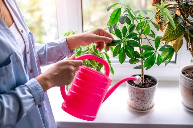 Женщина поливает комнатные растения с помощью лейки