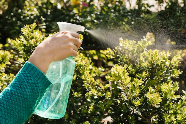 Woman watering plants with spray bottle