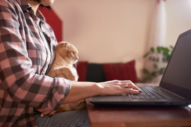 Женщина в удобном стиле покупает по кредитной карте на черном ноутбуке с кошкой