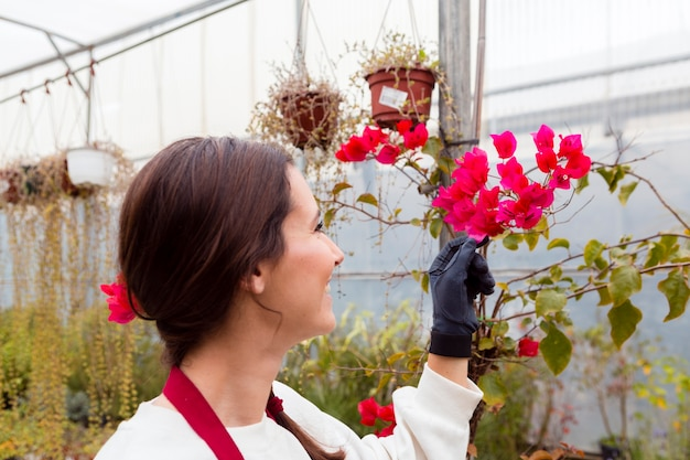 Woman wearing gardening clothes and touching flowers in greenhouse