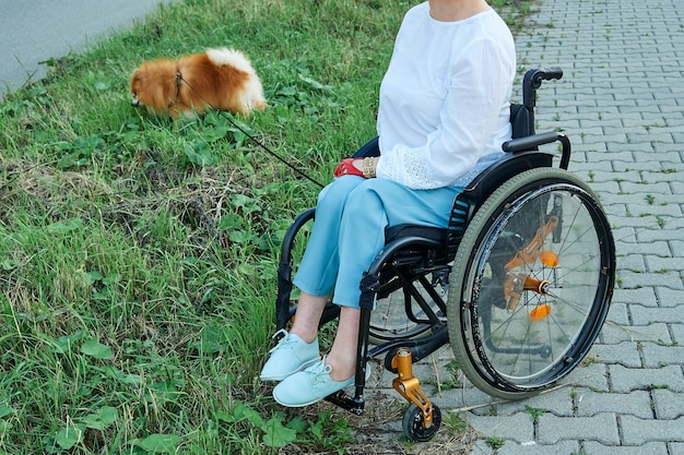 A woman in a wheelchair walks with her dog outdoor. international day of people with disabilities