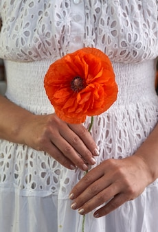 Woman in white dress holding poppe flowers, close up on her hands. spring time dreams.