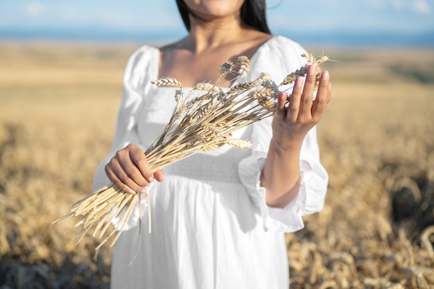 Woman in white dress stands in field with wheat person hold in hands bundle of ripe spikelets harves...