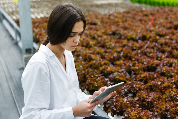 Woman in white laboratory robe examines salad and cabbage in a greenhouse using a tablet