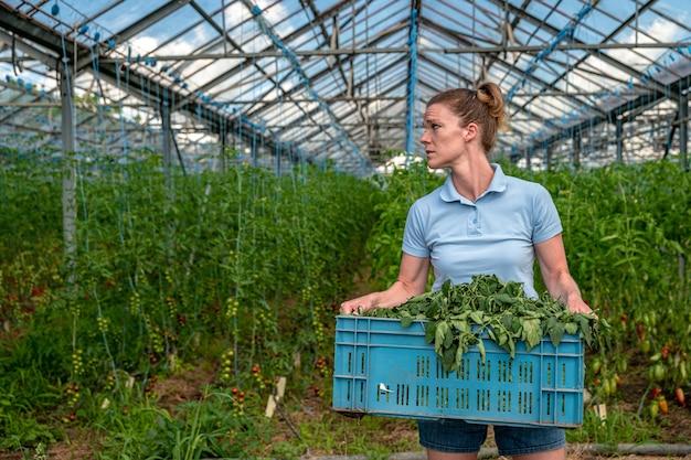 温室で彼女の手に雑草の箱を持つ女性