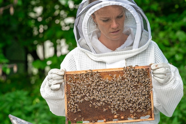 養蜂でミツバチとワックスフレームを持つ女性