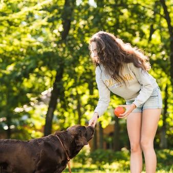 공원에서 강아지의 코를 만지고 공 여자