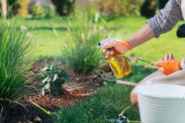 Woman with diffuser. caring woman wearing squared shirt and orange gloves holding diffuser sprinkling water on plants