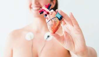 Woman with electrodes holding figurine of heart