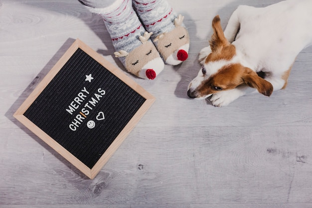 Woman with funny reindeer socks at home with her dog and a vintage letter board with merry christmas message. indoors