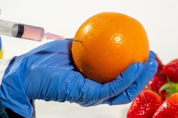 Женщина в перчатках использует шприц с генетической модификацией фруктов и овощей