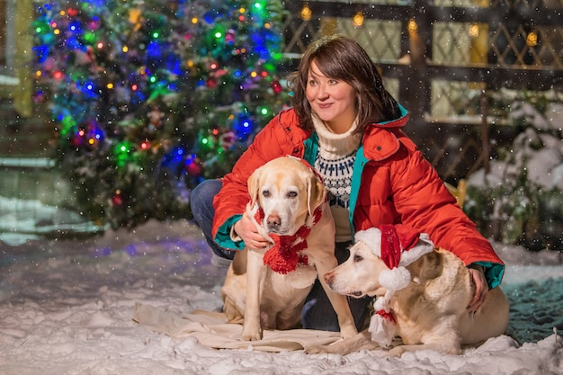 A woman with a golden labrador in a scarf sits near a decorated christmas tree and sleigh during a snowfall in winter in the courtyard of a residential building.