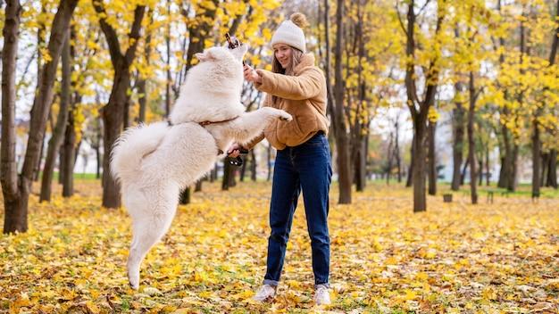 Женщина с собакой осенью в парке. женщина играет с собакой с помощью палки, собака прыгает. листья и пожелтевшие деревья вокруг