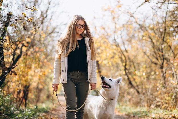 公園で歩いている犬の女