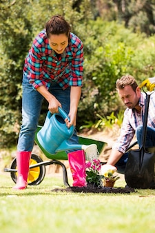 Woman with man watering plant at lawn