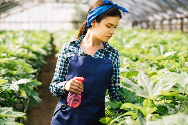 Woman with spray bottle looking at plants in greenhouse
