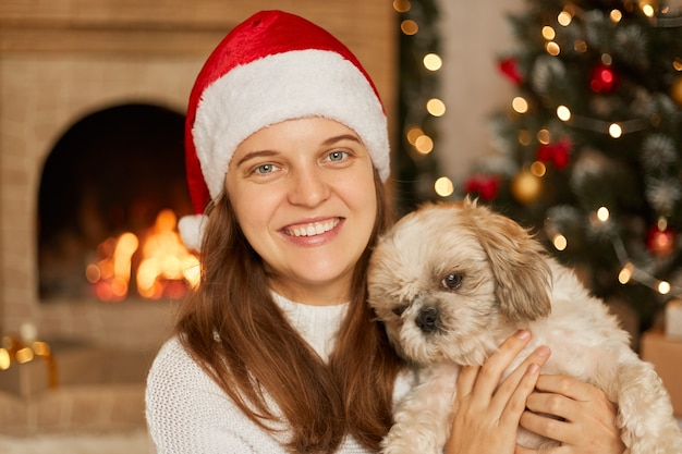 Woman with toothy smile hugging her small poodle dog, , wearing christmas hat and white sweater, being in room decorated with lights, x-mas tree, posing near fireplace.