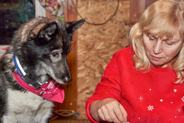 A woman with white hair and a sled dog sit at the dinner table