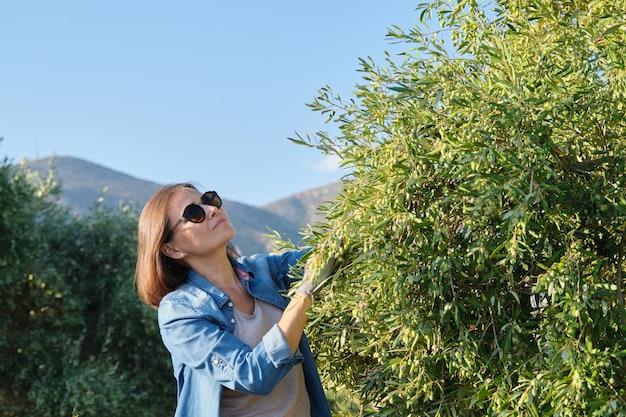 オリーブ園で働く女性