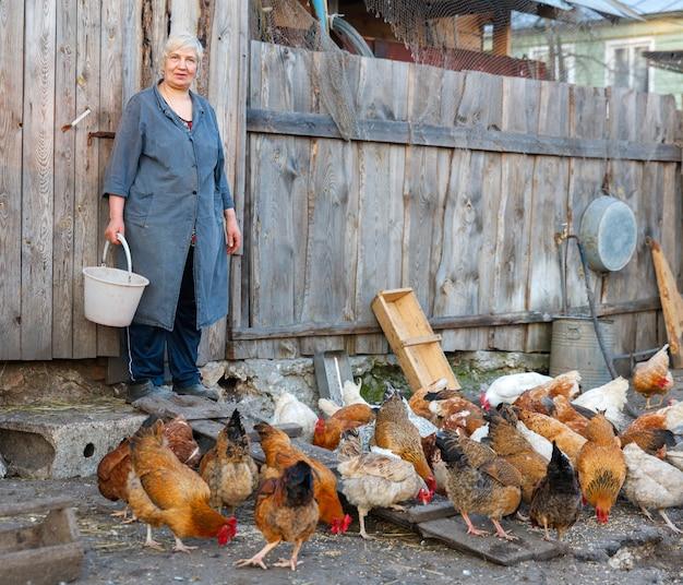 養鶏場で働く女性