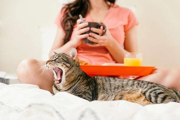 Женщина работает со своим портативным компьютером и завтракает с кошкой на кровати.