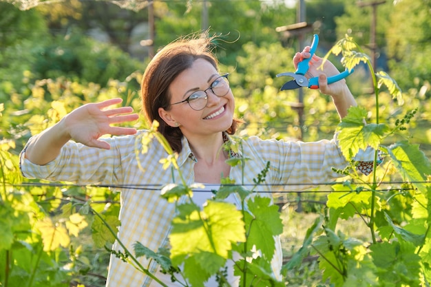 Woman working with vine bushes