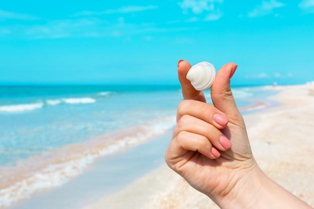 Womanâ´s hand holding a seashell on the beach.