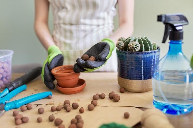 Руки женщины в перчатках, посадка молодых кактусов в горшок. хобби, досуг, комнатные растения, домашнее садоводство, концепция друзей в горшках