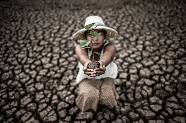 Women are sitting holding seedlings are in dry land in a warming world.