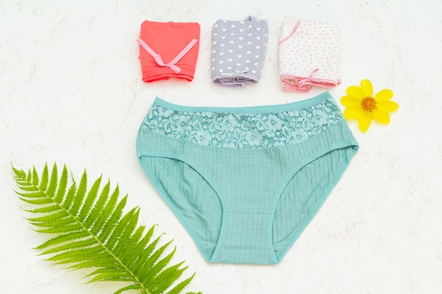 Women cotton panties with a flower bud and a leaf of fern on the white structured background. woman underwear set. top view.