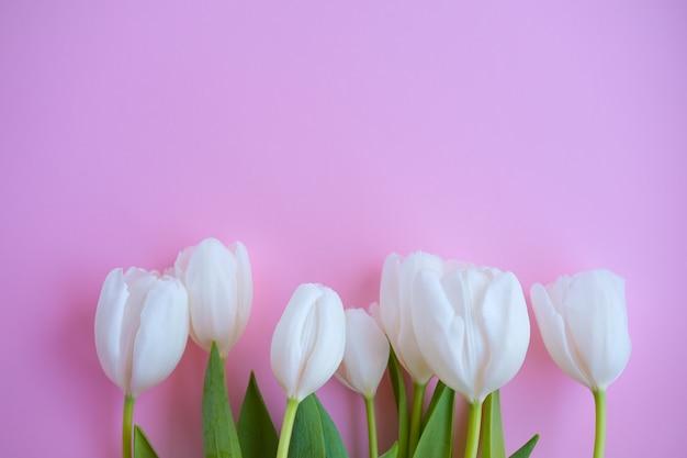 女性の日。母の日。ピンクの背景に白いチューリップ。春の花。3月8日。花の背景。