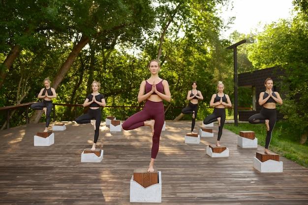 여름 공원에서 그룹 요가 훈련에 균형 운동을하는 여성