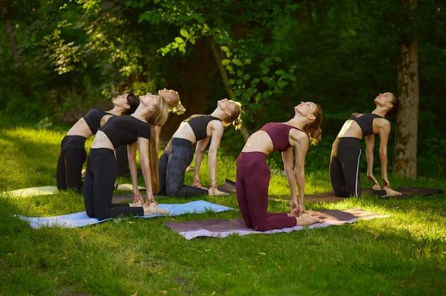 Женщины делают упражнения на растяжку, групповые занятия йогой на траве в парке