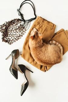 Женская модная одежда, аксессуары, милый красивый рыжий котенок на белом. плоская планировка, вид сверху минимальный модный коллаж. брюки, туфли на каблуках, авоська