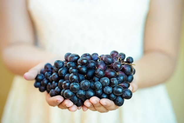 Women hand holding a bunch of red grapes