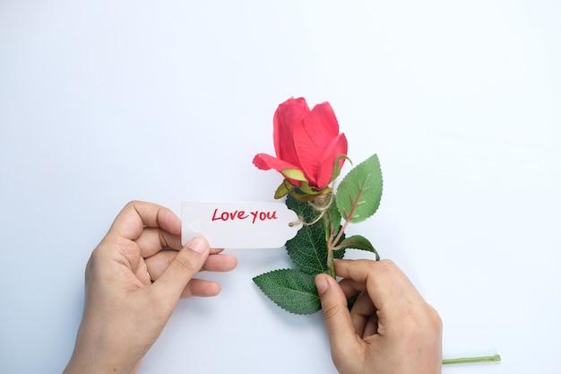 白いスペースにバラの花を持っている女性の手