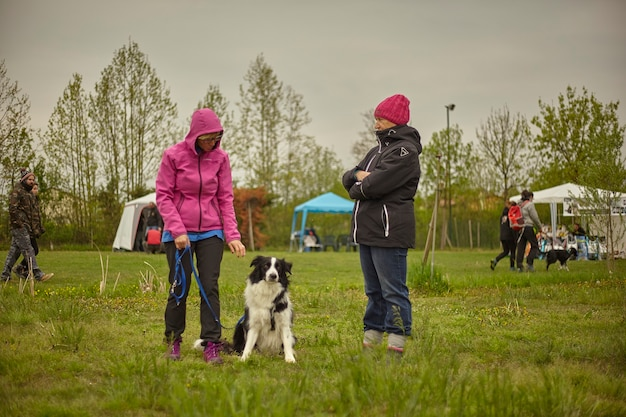 Женщины хорошо проводят время в парке с собакой