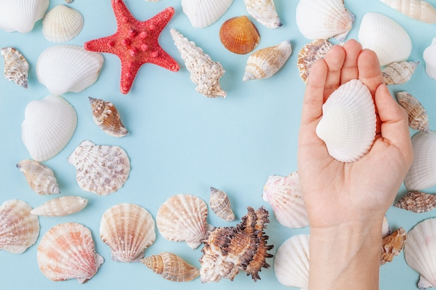 Women's hand hold a seashell on a blue summer background with different shells and starfish