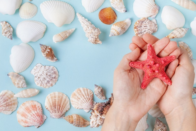 Women's hands hold a starfish on a blue summer background with different shells and starfish