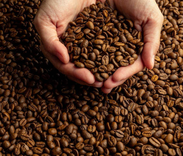 Women's hands holding in heap of a large handful of coffee beans