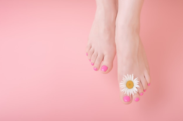Women's legs with bright pedicure on a pink background. chamomile flower decoration. spa pedicure skincare concept