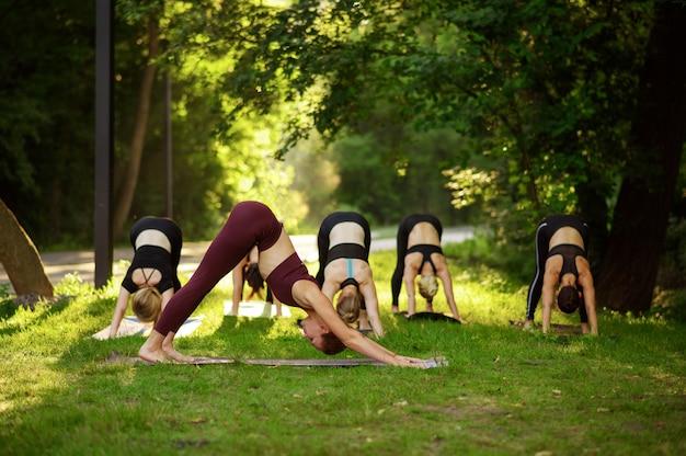 Женщины сидят в позе йоги на траве, групповая тренировка