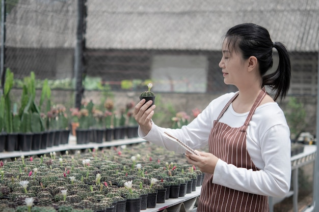 Women take care of the cactus garden, the concept of selling online, sell online through the trees.